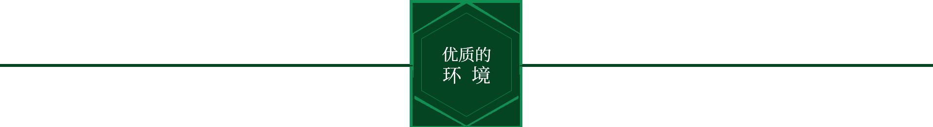 桂林周氏顺发食品有限公司优质环境